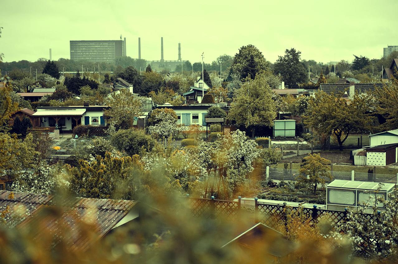 """""""Westersieck"""" und """"Am Bohlweg"""", zwei der ältesten Kleingartenvereine  Wolfsburgs liegen zu Füßen einer der modernsten und größten Automobilfabriken Europas. Eigentlich ein Anachronismus in der Volkswagenstadt, der Stadt der Mobilität, aber gleichzeitig eine Utopie der Stadt an sich, denn hier gibt es keine Strassen und keine Autos. Wie in der künstlichen Welt der """"Autostadt"""", der Erlebniswelt des Volkswagenkonzerns, auf der gegenüberliegenden Seite der Kleingarten gelegen, müssen die Fahrzeuge an der Peripherie abgestellt werden. Hier werden alle zu Fußgängern. Die Wolken hangen tief, der Himmel ist grau, für einen Tag im Mai ist es viel zu kalt, die Kleingartenanlage wirkt wie ausgestorben, kein Wetter um sich mit Gartenarbeit zu vergnügen, und nur wenig haben den Weg in Ihre Laube gefunden."""
